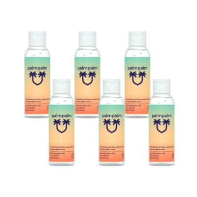 6 pack of 2oz palmpalm hand sanitizer